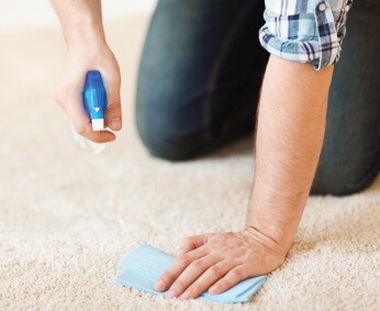 North London Carpet Cleaning Company