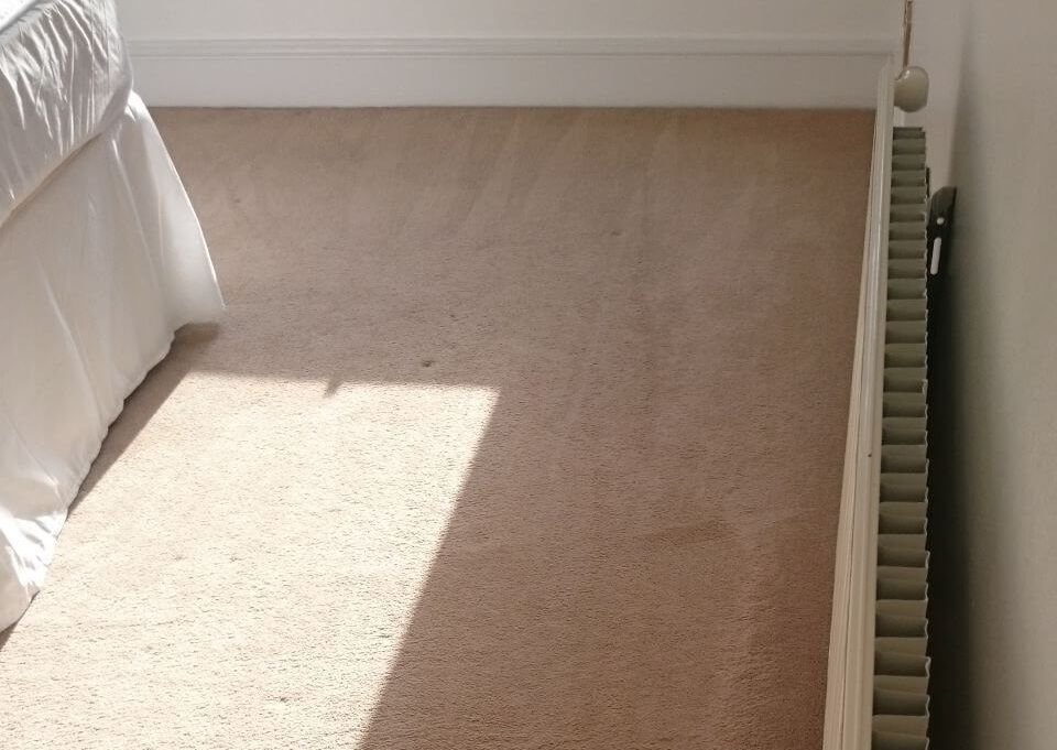cleaning a carpet stain Bexley