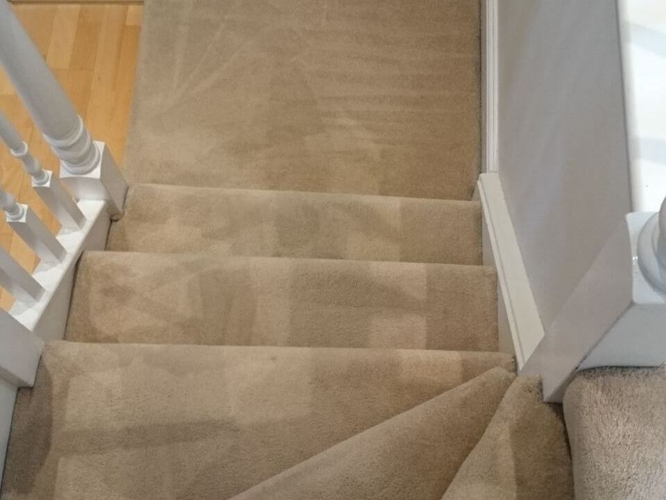 cleaning a carpet stain Hackney