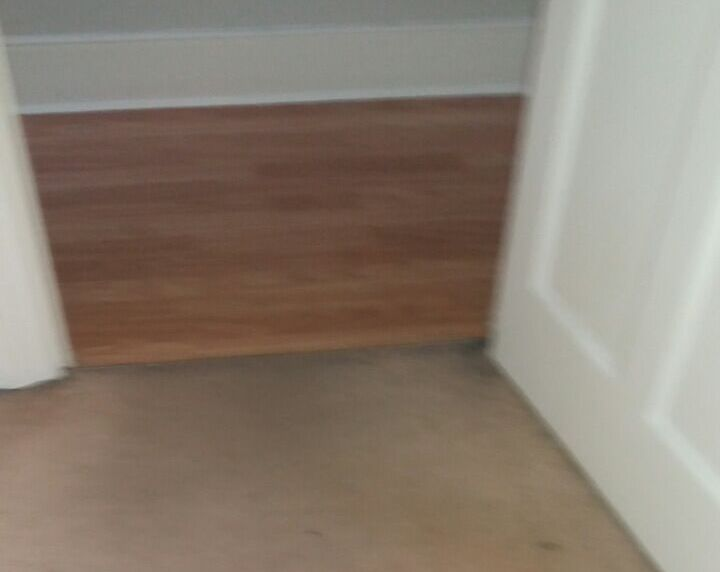 cleaning a carpet stain Haggerston