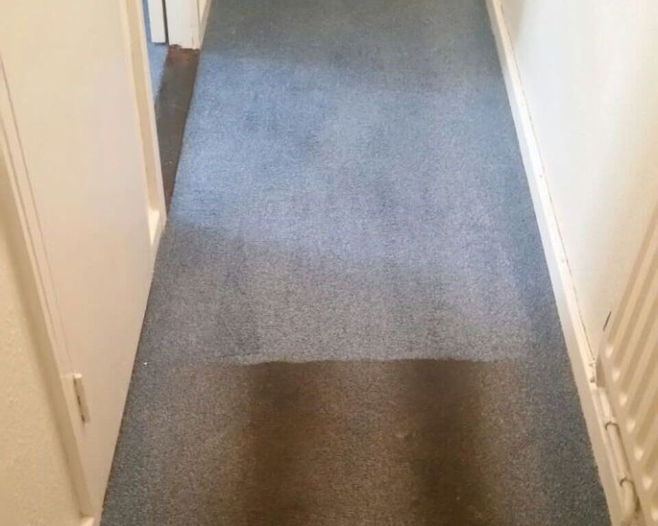 cleaning a carpet stain Hitchin
