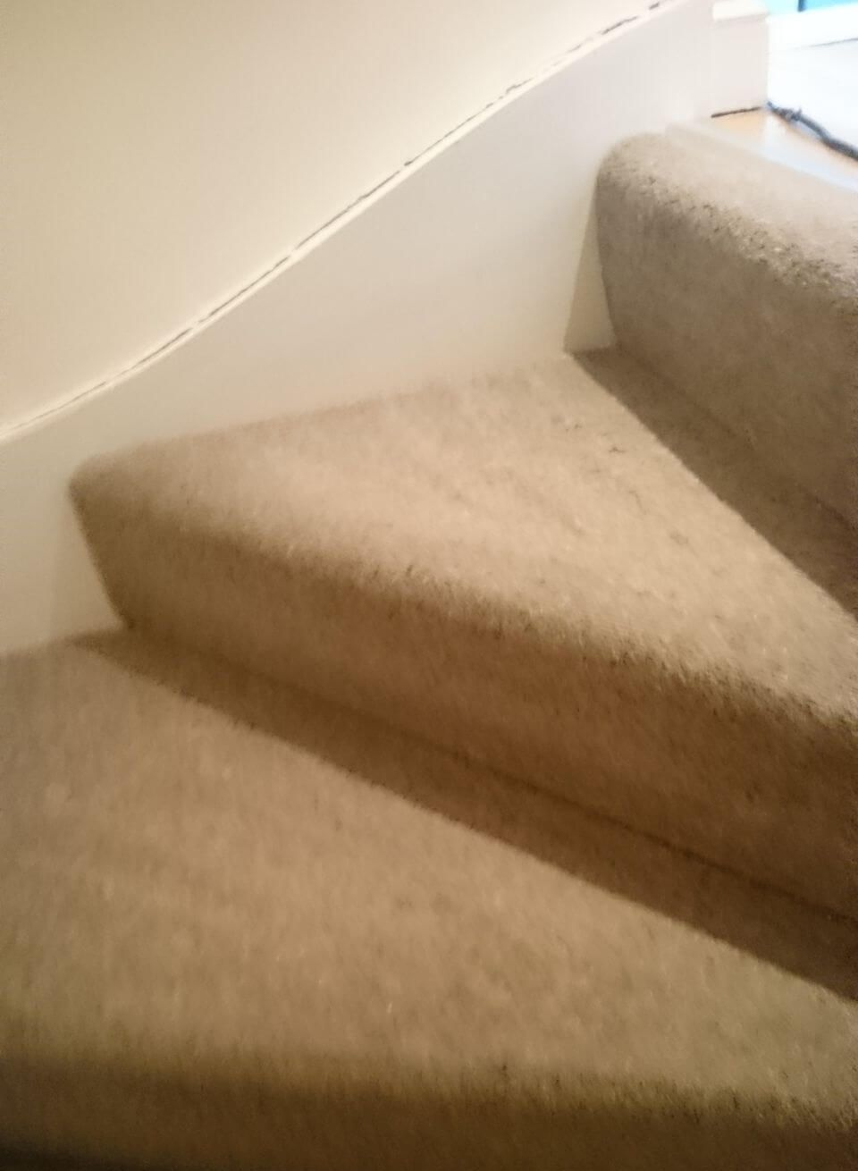 cleaning a carpet stain Slough