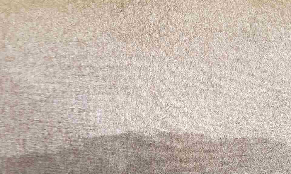 cleaning a carpet stain Heston