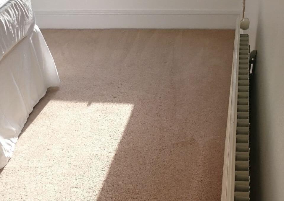 clean a carpet Ashford