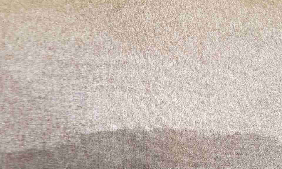 EN10 upholstery steam cleaner