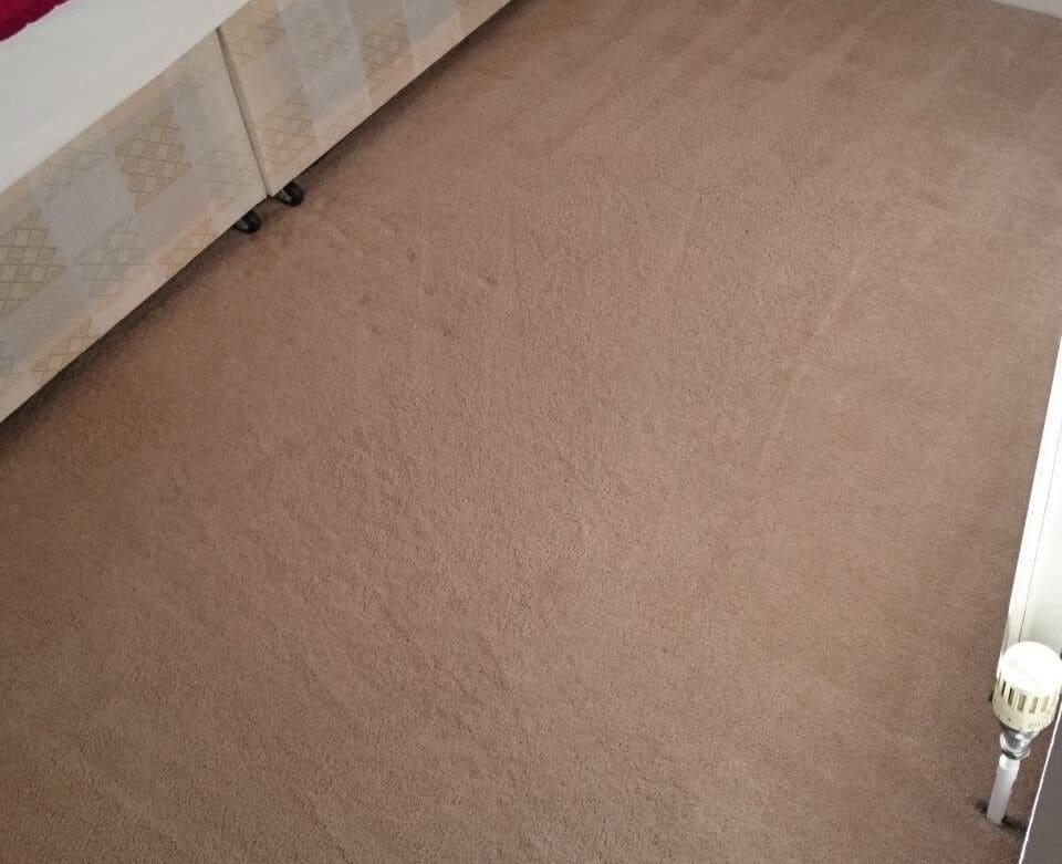 clean a carpet Fulham
