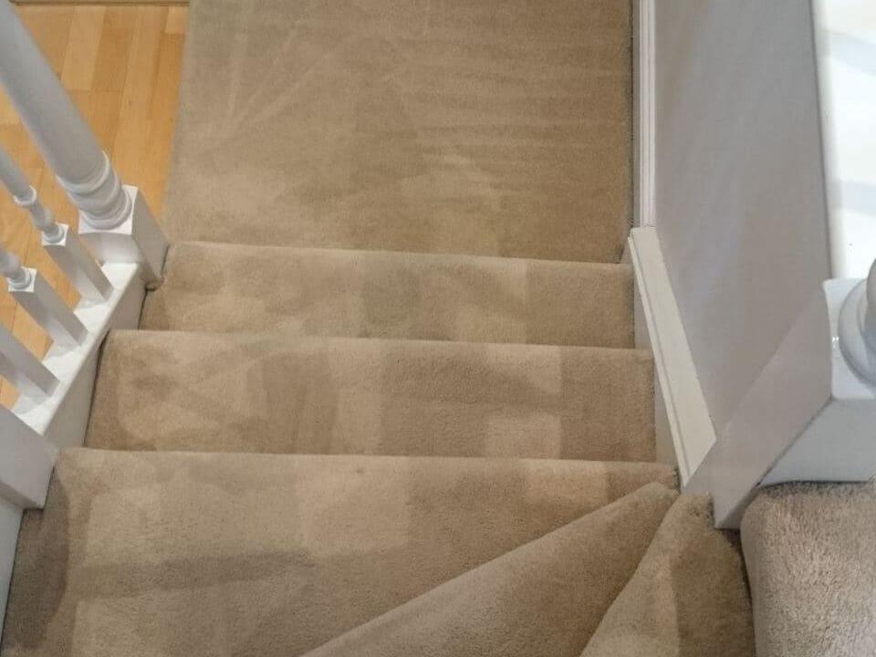 steam carpet cleaner Kingsbury